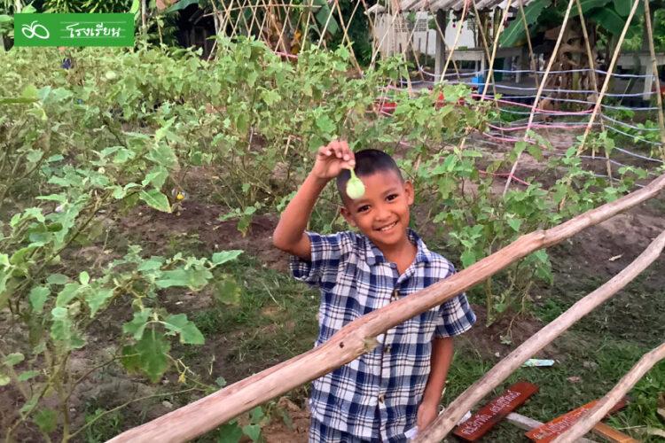 ทุนเสมอภาค ช่วยสร้างรายได้นับแสน รร.บ้านยะบะลุยปลูกผักขายแบ่งเบาภาระผู้ปกครอง